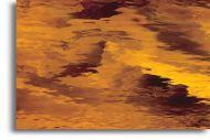 S111W-Dark Amber Waterglass