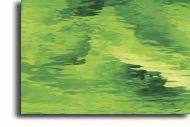 S5262W-Moss Green Waterglass